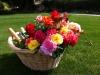 38 Cesto de rosas / Basket of roses