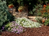 29 Jardim de baixo / Lower garden