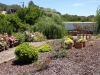 36 Jardim de baixo / Lower garden