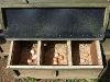 48 Ovos no galinheiro / Eggs in the coop
