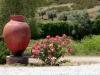 40 Talha com roseira / Pot and rose bush